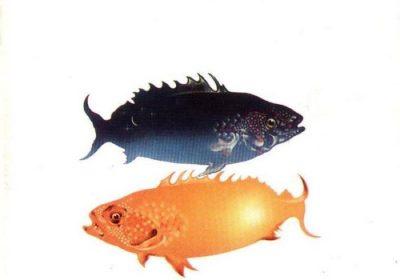 venditti_sotto_il_segno_dei_pesci